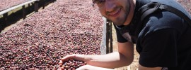Andy and the Guji beans